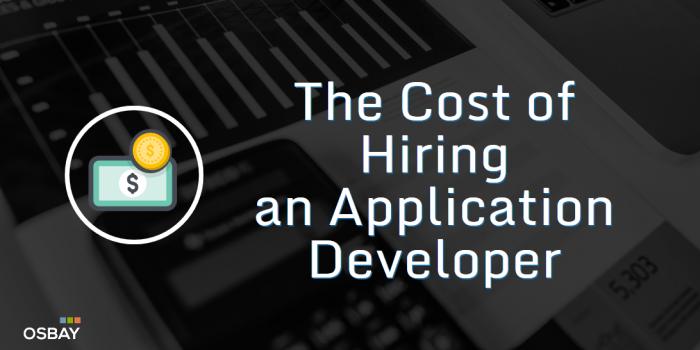 hire app programmer