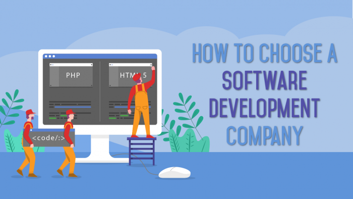 Software Dvelopment Company
