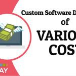 Custom Software Development Company of Various Cost